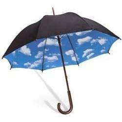 Paraguas Largo Dama 700